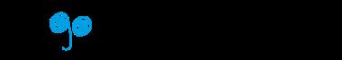 Pingota imaxe 1